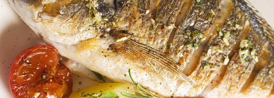 מדריך מתכוני הכנת דגים